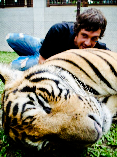 Working with Tigers, Thailand