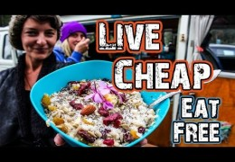 LIVE CHEAP – EAT FREE
