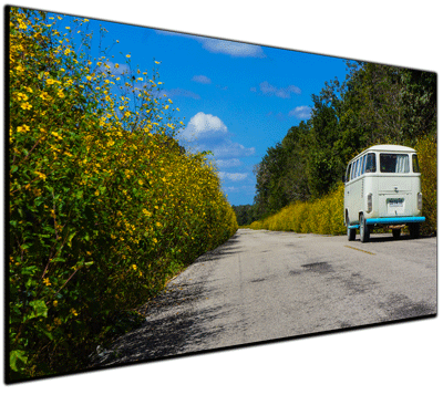 Flower Power VW Bus - Print