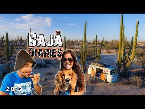 The Baja Diaries
