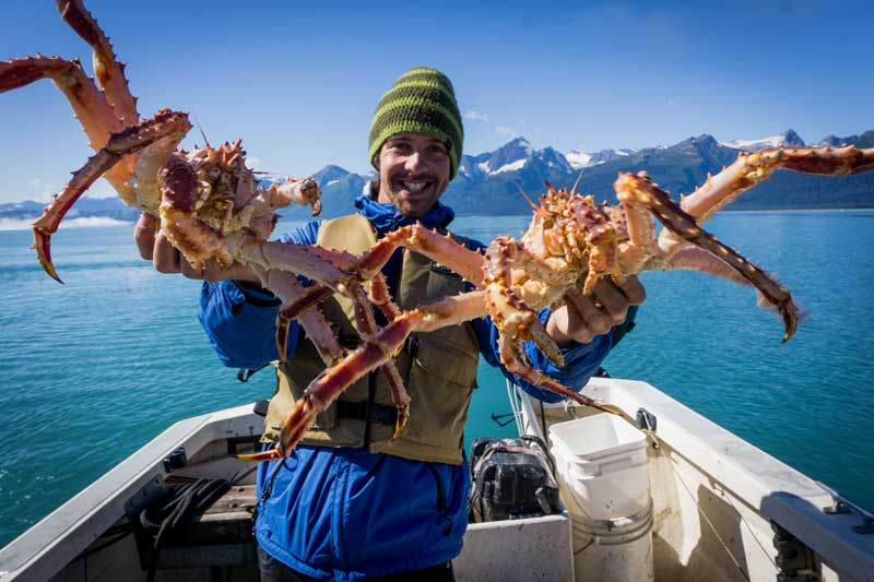 alaska-king-crab