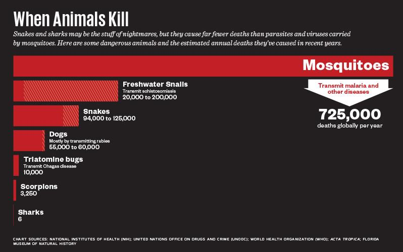 mosquito_killers